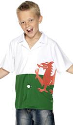 Детски костюм - Уелски футболен запалянко