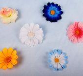Цветчета за украса